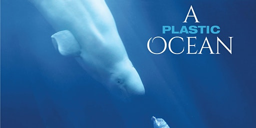 A Plastic Ocean - Discussion