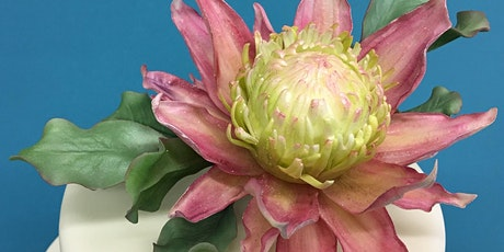 Protea & Foliage in Sugar - Wired Sugar Flowers tickets