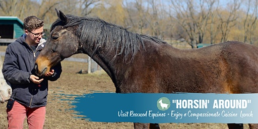 Horsin' Around January 18: Visit Rescued Equines & Enjoy a Compassionate Cuisine Lunch