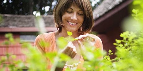 Growing Fragrant and Medicinal Herbs tickets