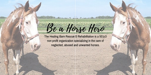 The Healing Barn Be A Horse Hero