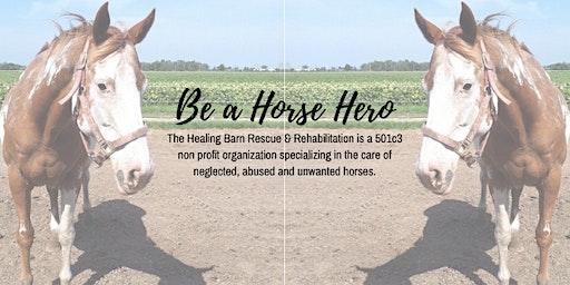 The Healing Barn Be A Horse Hero