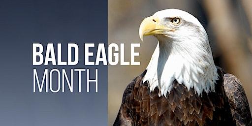 Southern Utah Bald Eagle Viewing 2020