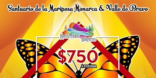 Santuario de la Mariposa Monarca y Valle de Bravo