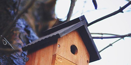 Build your own Nest Box tickets