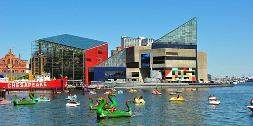 Baltimore National Aquarium - Bus Trip - Spring Break 2020