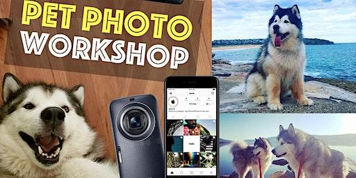 PET PHOTO Workshop. 3 hr outdoor class Hobart