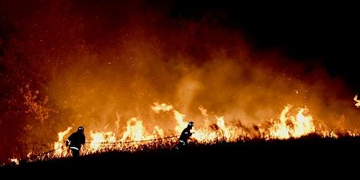 Buildings, Bushfires and Rebates