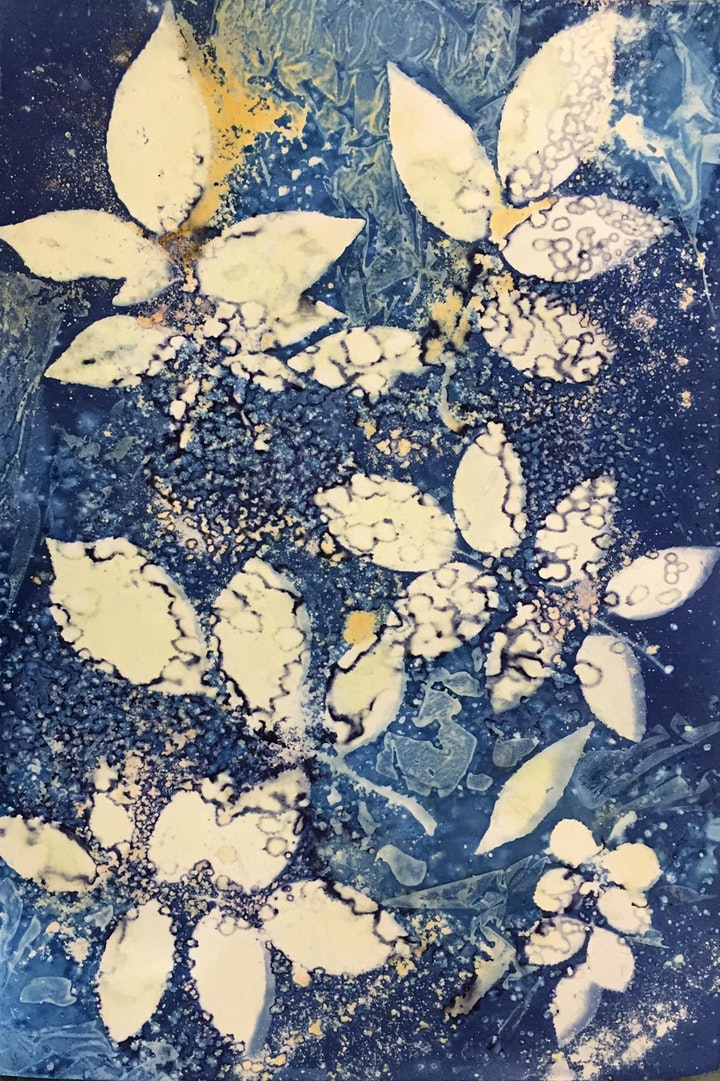 Cyanotype Workshop with Sharon Anderson image