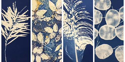Cyanotype Workshop with Sharon Anderson
