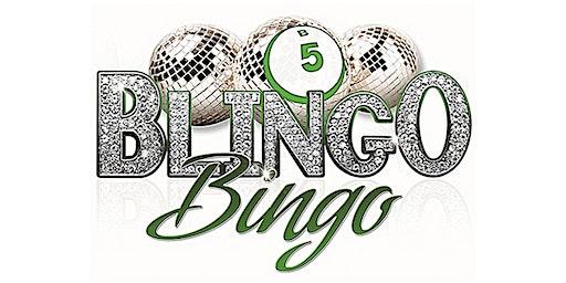 BLINGO Fundraiser BINGO with BLING!