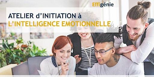 Atelier d'initiation à l'Intelligence Émotionnelle +Test de vos compétences