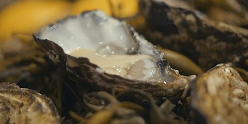 Oyster industry workshop