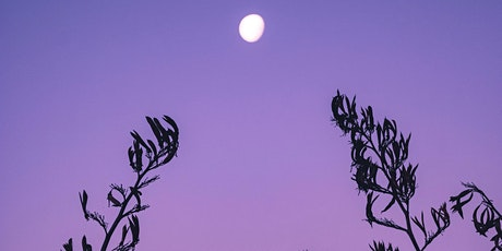 New Moon Manifestation Ritual using energy medicine, NLP and meditation tickets