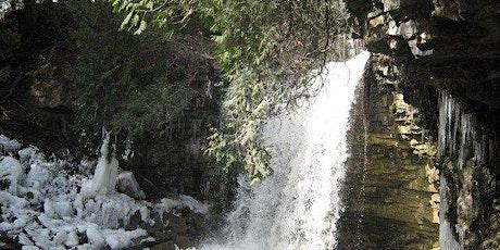Toronto Bruce Trail Club Hilton Falls snowshoe hike # 6386 on 19 01, 2020 tickets