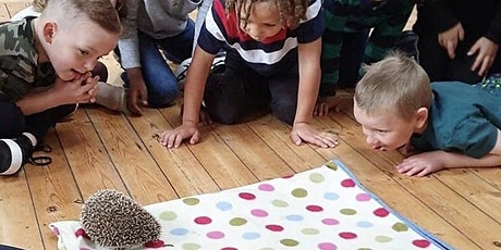 Animal Encounters: 2-2.45pm tickets