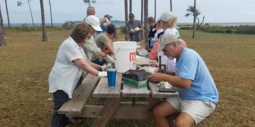 Oyster Ecology 101