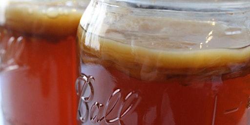 Home Brewing Kombucha: The Basics