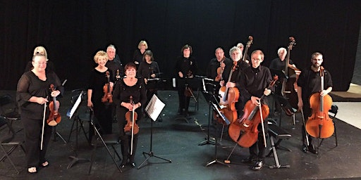Classical Music at the Winyah:  The Saltwater Chamber Orchestra