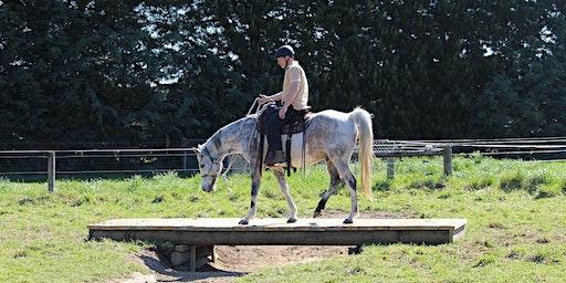 February Horse Adventure Park session - morning