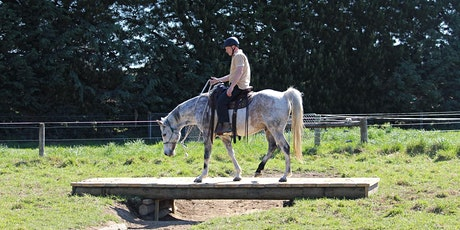 March Horse Adventure Park session - Morning tickets