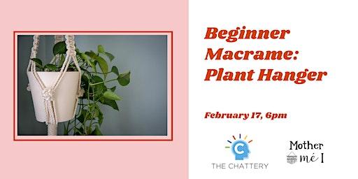 Beginner Macrame: Plant Hanger