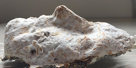Mycelium Bio-Materials workshop  tickets