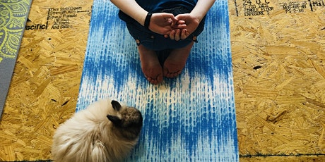 Easter Bunny Yoga at the Irsay YMCA tickets