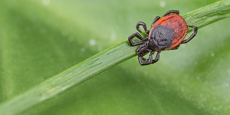 Lyme Disease Support Group tickets