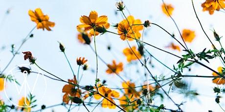 108 Sun Salutes + Meditation + Reiki for Vernal Equinox tickets