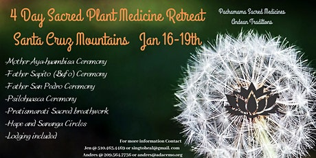 4 Day Sacred Plant Medicine Retreat tickets