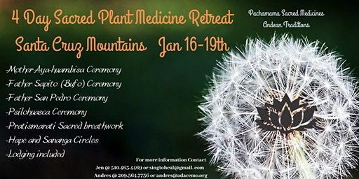 4 Day Sacred Plant Medicines Retreat