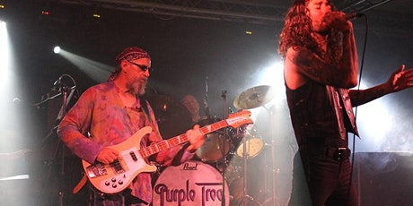 Purple Tree - A Tribute to the Deep Purple Family Tree tickets