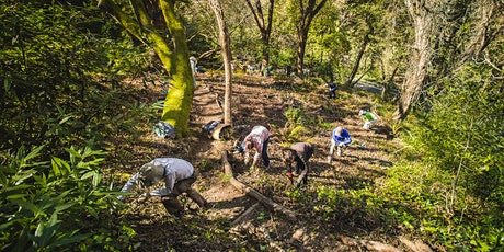 10 Years of East Bay Restoration with Garber Park Stewards tickets