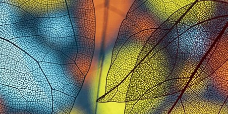 Aberdeen: Ayurveda: Nature's Rhythm, an Introduction tickets