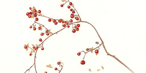 "Opening Reception: Gloria Goguen: ""Botanical Dreams"""