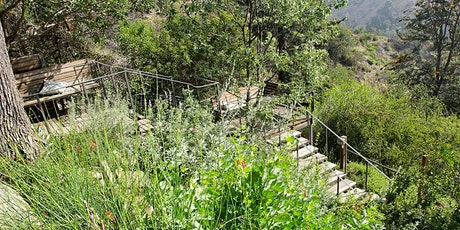 Theodore Payne Native Plant Garden Tour AFTER PARTY | March 28, 2020 | 5PM-8PM tickets