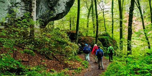 "Fr,01.05.20 Wanderdate ""SingleReise Müllerthal Trail Luxemburger Schweiz ab 40J"""