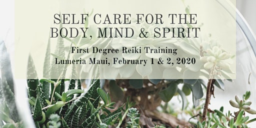 First Degree Reiki Training