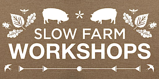 Kunekune Pig Workshop (May 24)