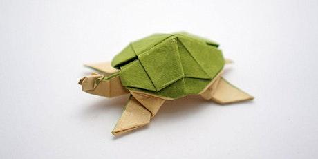 Origami Turtles (7yrs+) entradas