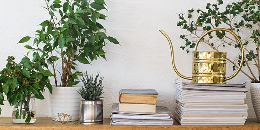 Urban Plants Collective: Self-watering Gardens