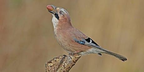 Lancashire Wildlife Photographs (Fulwood) tickets