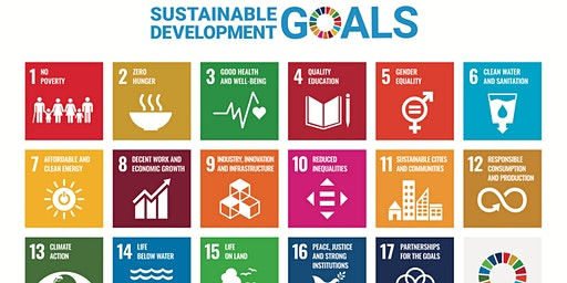 Morning discussion : Understanding the UN sustainable development goals!