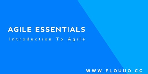 AGILE ESSENTIALS: Introduction To Agile Fundamentals   1 Day Course  