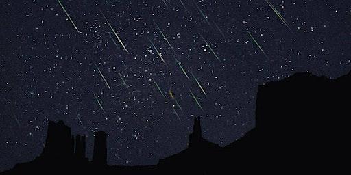Lyrids Meteor Shower Observation