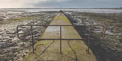 Photography Walkshop - Bedhampton to Langstone Shoreline