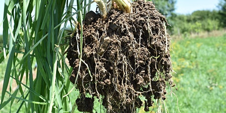 Understanding Soil Health on Horticulture Operations tickets