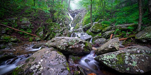 Spring Waterfall  Photography Workshop (2 Hour) in Shenandoah National Park