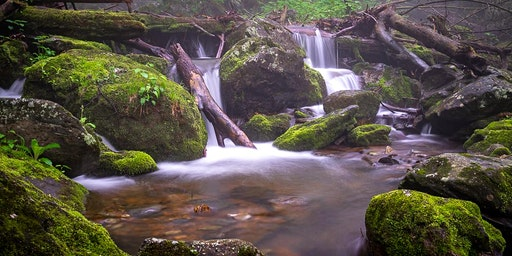 Spring Waterfall  Photography Workshop (4 Hour) in Shenandoah National Park